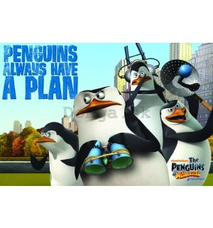 Plagát - Penguins of Madagascar