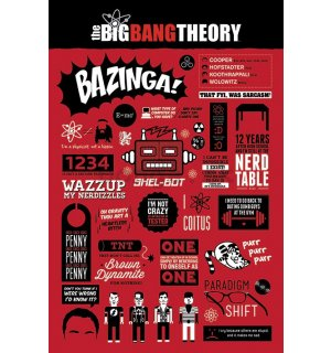 Plagát - The Big Bang Theory (Infografika)