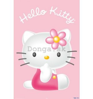 Plagát - Hello Kitty 3d