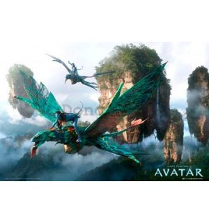 Plagát - Avatar flying