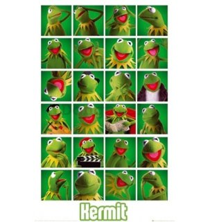 Plagát - The Muppets kermit collage