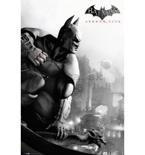 Plagát - Batman Arkham City