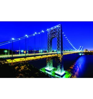 Fototapeta: Manhattan Bridge - 254x368 cm