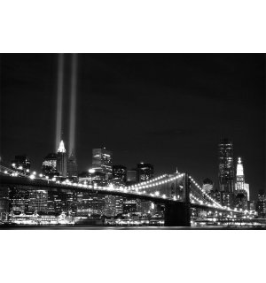 Fototapeta: Čiernobiely Brooklyn Bridge (2) - 254x368 cm