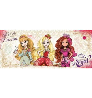 Fototapeta: Mattel Ever After High (3) - 104x250 cm