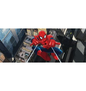Fototapeta - Spiderman (3)