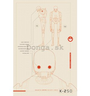 Plagát - Star Wars Rogue One (K-2S0 Blueprints)