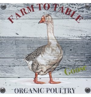 Obraz na plátne - Goose (Farm to Table)