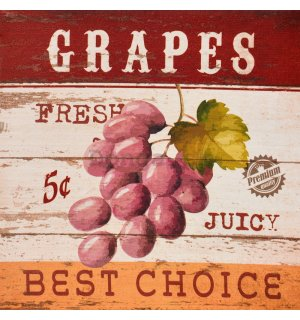 Obraz na plátne - Grapes (Best Choice)