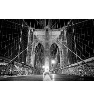 Fototapeta: Brooklyn Bridge (čiernobiely detail) - 184x254 cm
