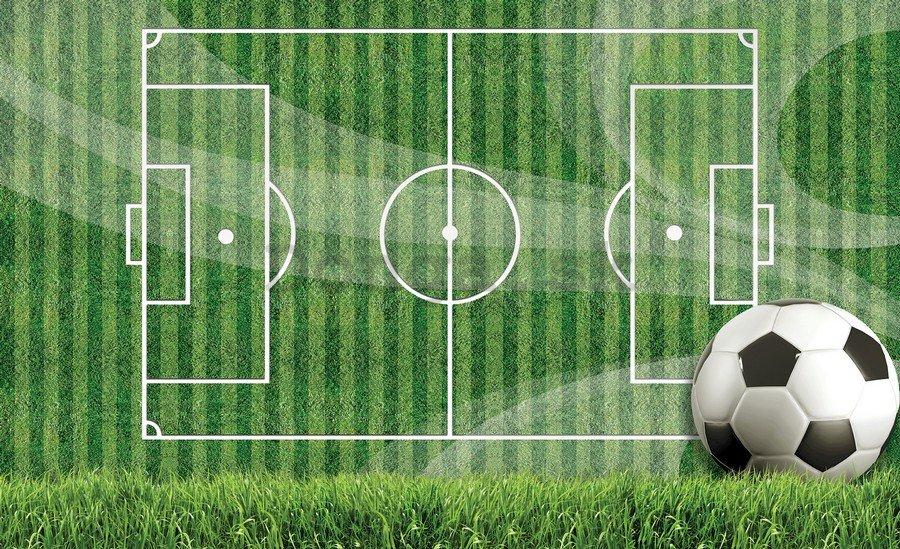 bf68d1bab Fototapeta: Futbalové ihrisko (1) - 184x254 cm - Donga