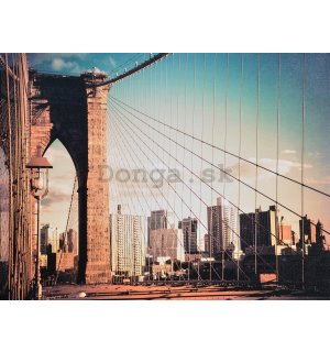 Obraz na plátne - Brooklyn Bridge (sieť)