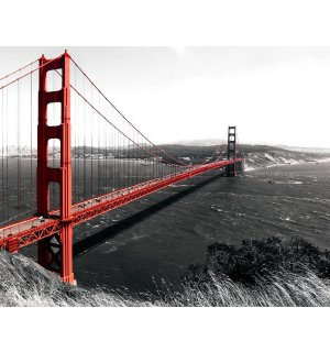 Obraz na plátne: Golden Gate Bridge (1) - 75x100 cm