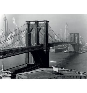 Obraz na plátne - Time Life, Brooklyn Bridge, New York 1946