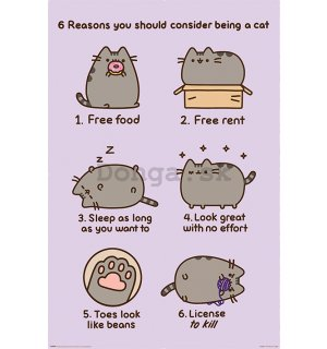 Plagát - Pusheen (Reasons to be a Cat)