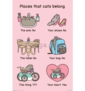 Plagát - Pusheen (Places Cats Belong)