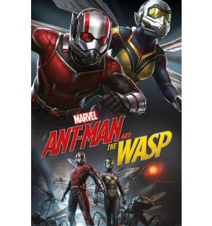 Plagát - Ant-Man and the Wasp (Dynamic)