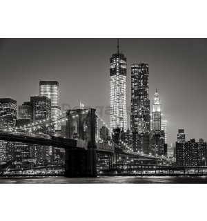 Fototapeta vliesová: Brooklyn Bridge (4) - 104x152,5 cm