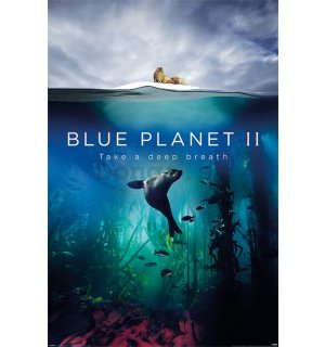 Plagát - Blue Planet 2 (Take A Deep Breath)