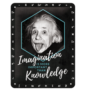 Plechová ceduľa: Einstein (Imagination & Knowledge) - 20x15 cm