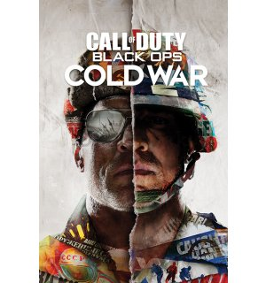 Plagát - Call Of Duty Cold War (Split)